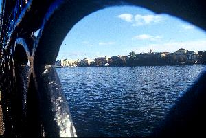 A toddler's eye view of the embankment